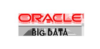 Oracle Bigdata